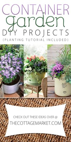 Container Garden DIY Projects - The Cottage Market