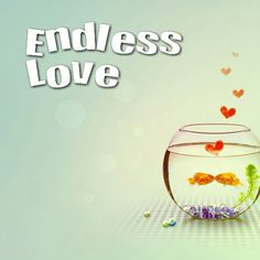 Because love is water proof! Experience it here - http://goo.gl/XDPU5W