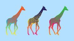 25 (Free) Creative Minimalist Wallpapers That Should Be on Your Desktop - dzzyn6