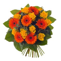 FlowerAura provides a wide varieties of Flower Bouquets and Flower Combos. We have Roses, Gerberas, Lilies, Anthuriums, Carnations which are crafted in beautiful Flower Arrangements. For more Details : http://www.floweraura.com/