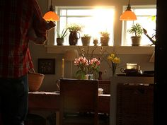 sunshine through the window