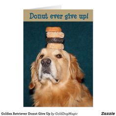 Golden Retriever Donut Give Up Card
