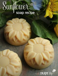 These cheerful little sunflower soaps are palm free and naturally colored with lemon peel powder.