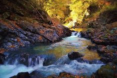 Valley stream in a fall 6 by Chikara Amano