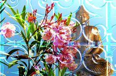 création personnelle sur le Bouddhiste  By Alain Chantelat