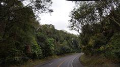 BR 277 entre Cascavel e Laranjeiras do Sul/Paraná/Brasil. By: Salete