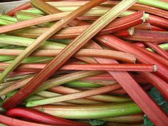 Easily freeze rhubarb for the winter with these four rhubarb freezing techniques. Also enjoy a recipe video teaching how to make rhubarb jam. Frozen rhubarb tips. Rhubarb Uses, Freeze Rhubarb, Rhubarb Jam Recipes, Rhubarb Rhubarb, Rhubarb Galette, Rhubarb Chutney, Freezing Fruit, Cancer, Compost