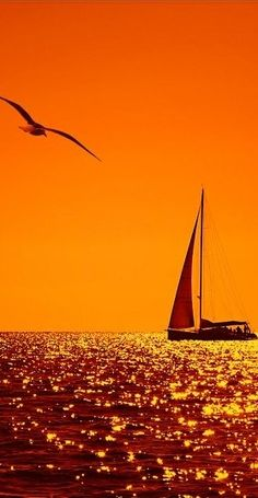 Sailing the ocean at dusk.red sky at night sailers delight, red sky in the morning sailers warning. Beautiful Sunset, Beautiful World, Beautiful Places, Beautiful Pictures, Simply Beautiful, Orange Aesthetic, Cool Photos, Sailing, Scenery