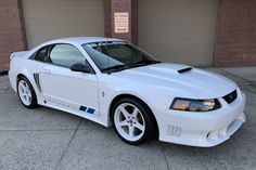 Saleen Mustang, 2001 Ford Mustang, Mustang Cobra, Ford Mustangs, New Edge Mustang, Oxford White, Stopping Power, New Tyres, Opal