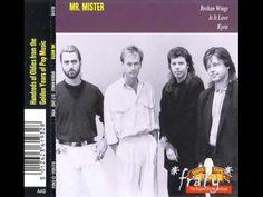 Mr. Mister - Broken Wings (1985)