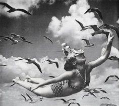 Deborah Stevenson, Free As A Bird - collage on paper on ArtStack #deborah-stevenson #art
