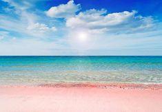 Le Meravigliose  spiagge rosa di #Budelli