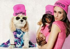 outfitters aspca charity dog clothing dogs fashion pets