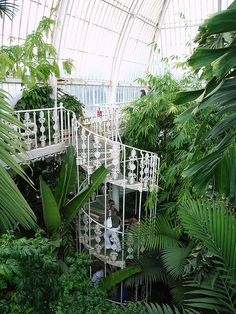 Spectacular! Do I need to say much more about this place? Kew Gardens Palm House (Botanical Gardens) - Kew