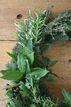 Wreath making for cheats   Herb and succulent wreath   How to make a wreath   Christmas wreath   Apartment Apothecary