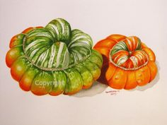 Watercolour squashes
