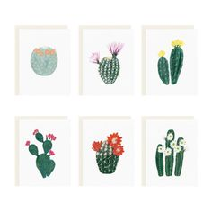 Our flowering cacti series is now available as an assorted box set. These spunky succulents are perfect for sending sweet sentiments on any occasion. - Includes six assorted blank cards and soft white