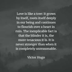 65 Famous quotes and sayings by Victor Hugo. Here are the best Victor Hugo quotes to read that will inspire you. Victor Hugo Quotes, Famous Quotes, Attraction, Writer, Inspirational Quotes, Positivity, Facts, Sayings, Reading