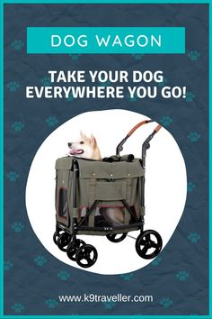 Ibiyaya Gentle Giant Pet Wagon. Support your big dog anywhere you go with the Ibiyaya Gentle Giant Pet Wagon! This dog wagon features 4 front & 2 large back tires for flexible maneuvering and comfort. Dog Stroller, Dog Activities, Everywhere You Go, Gentle Giant, Dogs Of The World, Big Dogs, Dog Owners, Dog Life, Pet Supplies