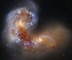 45 million light years away in the constellation Corvus are the colliding galaxies NGC 4038 and NGC 4039. In about 400 million years, the cores of the galaxies will merge and they will become one large spiral galaxy.