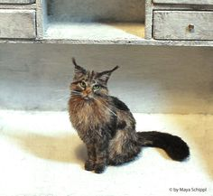 ~*~ OOAK ~*~ 1:12 Dollhouse Maine Coon Kitten Cat ~*~ Handmade ~*