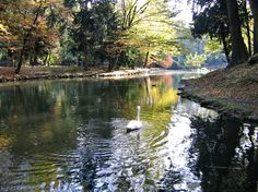 Monza Park- the park is crossed in its southern sector by the Lambro river.