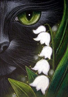 cat amongst lily of the valley...