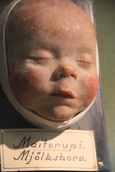 Infant Wax Moulage V by Curious Expeditions, via Flickr