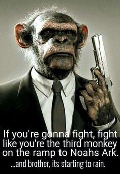 Fight like you're the 3rd monkey on the ramp to Noah's Ark.