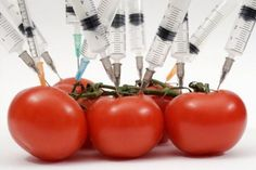 Syringes, gas masks and Frankenfood: Visuals of the GMO debate