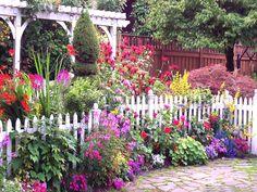 flower garden - Szukaj w Google