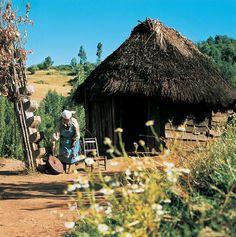 ruca mapuche en la localidad de Repocura Diego Rivera, I Want To Know, Cabin, Activities, World, Travel, Life, Koh Tao, Google