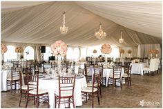 Wedding Cakes, Desserts and Floral Design in San Diego County Budget Wedding, Wedding Ideas, Wedding Bouquets, Wedding Flowers, San Diego Wedding Venues, Blush Pink Weddings, Wedding Bells, Tent, Floral Design