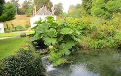 Jardin du Plessis Sasnières - Google+