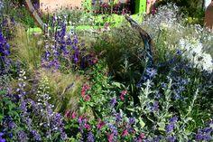 Ecover Garden Hampton Court Flower Show 2013