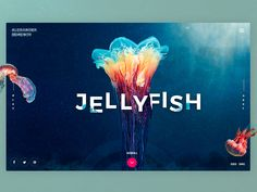 Web and Mobile Design Inspiration by Giga Tamarashvili 10