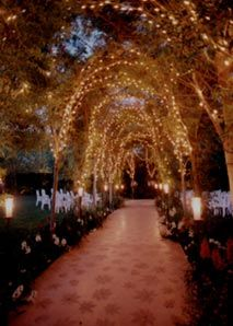 Wedding Venue: Hartley Botanica Paliuli Gardens.  2.5 acres, 19 vine covered archways, 2 aviaries, 5 waterfalls, wired for lighting and sound.  Up to 375 guests.  8am - 2.30pm or 3.30 - 10pm Family owned nursery.