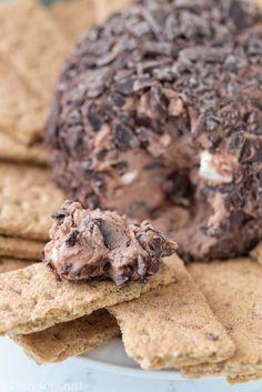 Easy Chocolate S'mores Cheeseball Dip Recipe