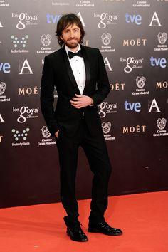 Todas las imagenes de celebrities en la alfombra roja de la 28 edicion de los goya 2014