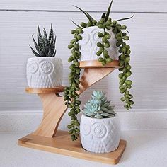 Owl Succulent Pots with 3 Tier Bamboo Saucers Stand Holder - White Modern Decorative Ceramic Flower Planter Plant Pot with Drainage - Home Office Desk Garden Mini Cactus Pot Indoor Decoration Small Potted Plants, Small Succulents, Succulent Pots, Planting Succulents, Plant Pots, Cactus Seeds, Cactus Pot, Mini Cactus, Cactus Plants