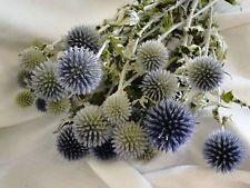 blue filler flowers - Google Search