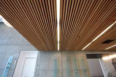 Corredores, halls e escadas minimalistas por Deckon Asma Tavan Sistemleri