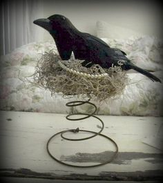 Old Rusty Bed  spring with crow in nest