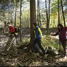 Mount Monadnock, White Cross Trail.  Interactive map of area hiking trails