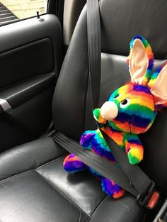 Rainbow Rabbit on his way to another school!