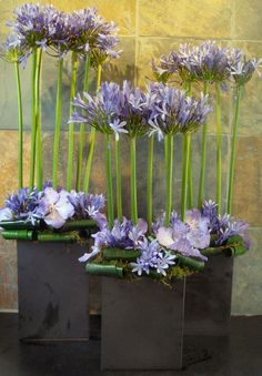 Lavender modern flower arrangement featuring vanda orchids and allium for a hotel lobby.