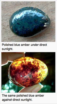 Blue amber is awesome! Microscopic Images, Blue Amber, Mineralogy, Alexandrite, Rock Candy, Opals, Rocks And Minerals, Science And Nature, Geology