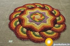 60 Most Beautiful Pookalam Designs for Onam Festival - part 4 Rangoli Designs Latest, Rangoli Designs Flower, Rangoli Ideas, Rangoli Designs Diwali, Rangoli Designs Images, Flower Rangoli, Beautiful Rangoli Designs, Diwali Rangoli, Mehndi Designs