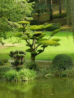 Japonesa Maulévrier Park (Le Parc Oriental De Maulévrier). Francia / Arhimir / Arhimir