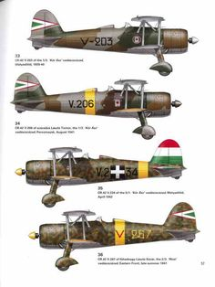 CR42 Hungarian Air Force